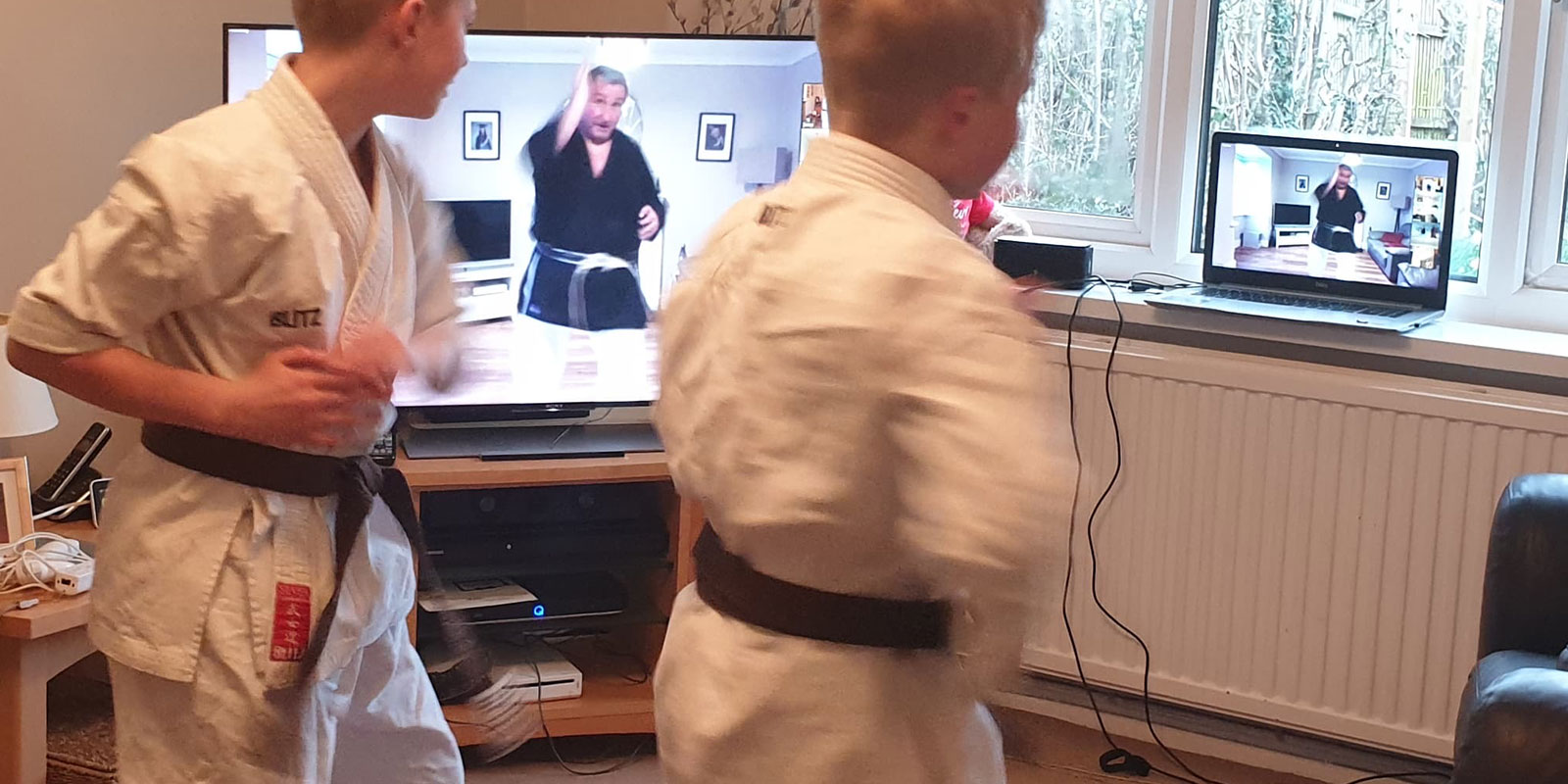 Live streamed karate classes. Take lessons in your home